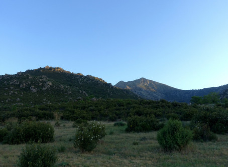 Camino de Madrid ~ J03 Mataelpino → Cercedilla