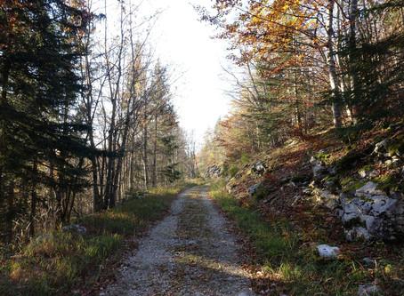 Escapade au Mont Margeriaz