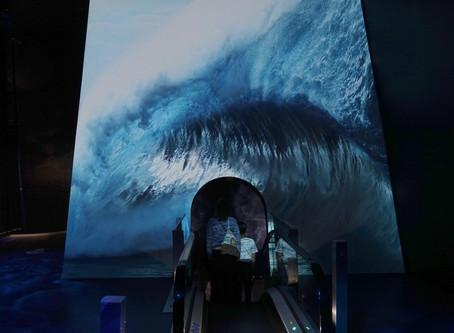 Le plus grand aquarium d'Europe : le Nausicaa de Boulogne-sur-Mer