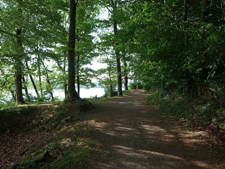 Chemin d'Assise du lac des Settons à Anost