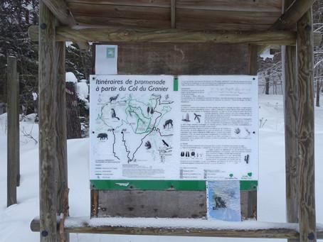 En Chartreuse : la Gorgeat et le Mont-Joigny