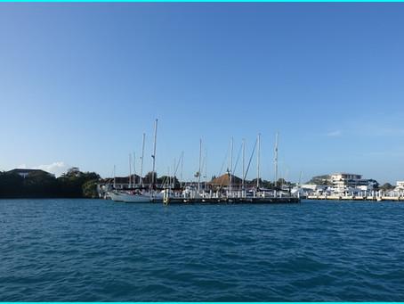 The Exumas ~ Allans Cay
