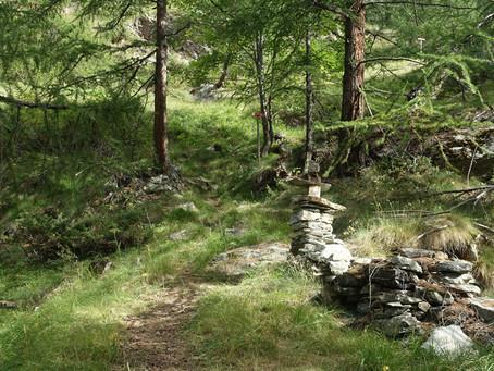En Valpelline #1 L'Alpage de Luseney
