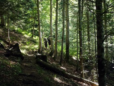 Le Col de Bellefont