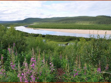 Au Finnmark
