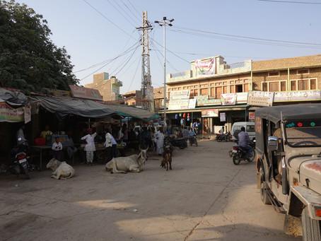 Chez les Bishnoïs à Bhap