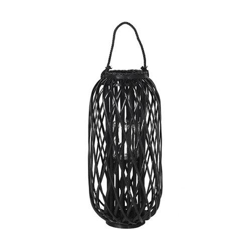 Black Willow Lantern