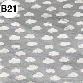 B21.jpg