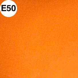 E50.jpg