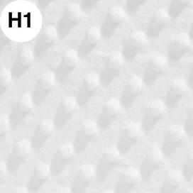 H01.jpg