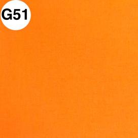 G51.jpg
