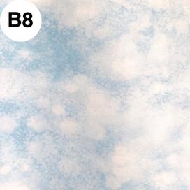 B08.jpg