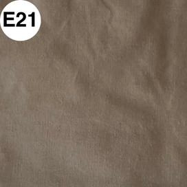 E21.jpg