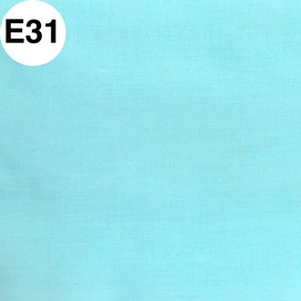 E31.jpg