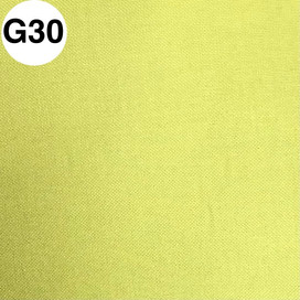 G30.jpg