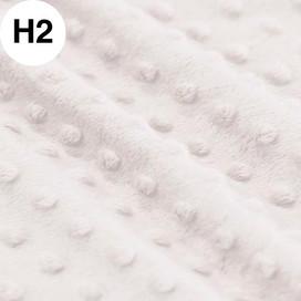 H02.jpg