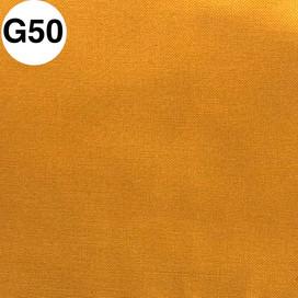G50.jpg