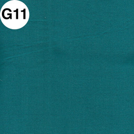 G11.jpg