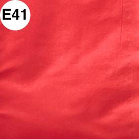 E41.jpg