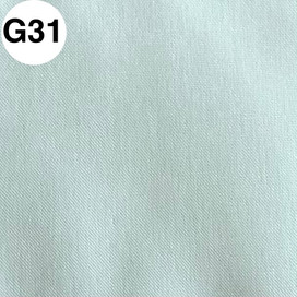 G31.jpg