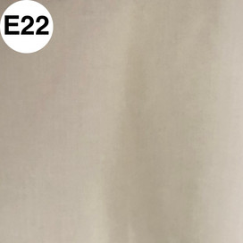 E22.jpg