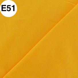 E51.jpg