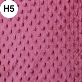 H05.jpg