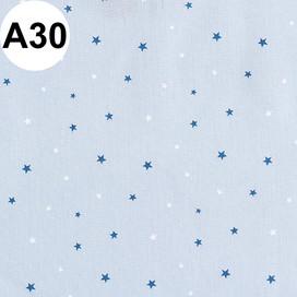 A30.jpg