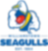 seagulls logo.png