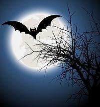 halloween-fond-avec-la-batte-et-l-39-arb