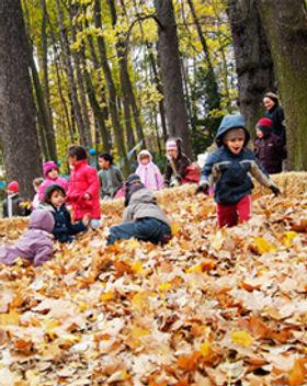 enfants_feuilles_tete_or_2.jpg