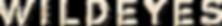 wildeyes_logo_black-02 2.PNG