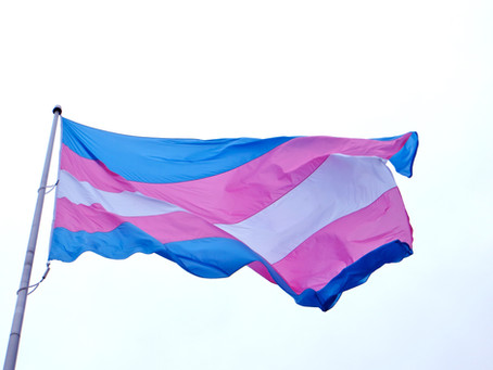 International Transgender Day Of Visibility: Celebrate!
