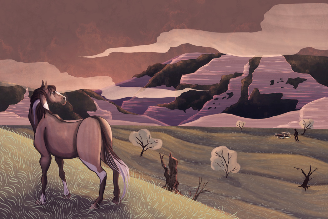 Wild, Wild Horses