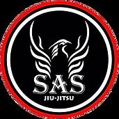 SAS2.png