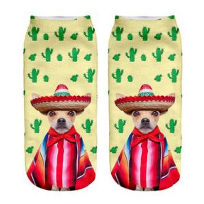 Cinco De Mayo Chihuahua Socks!