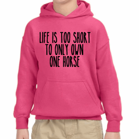 Life is too short to only own one horse