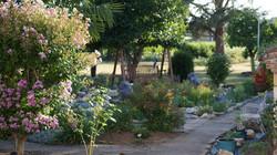 Caday Rouge Herb Garden