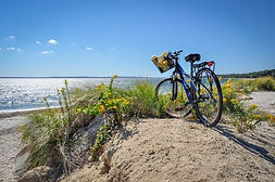 SSBW Bike on beach.jpg