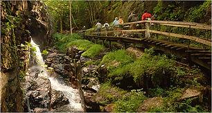 flume Trail.jpg