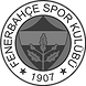 1200px-Fenerbahçe.svg.png