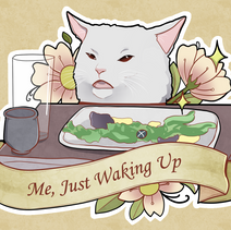Disgruntled Cat