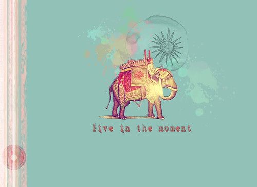 elephants & anxiety pocketbook