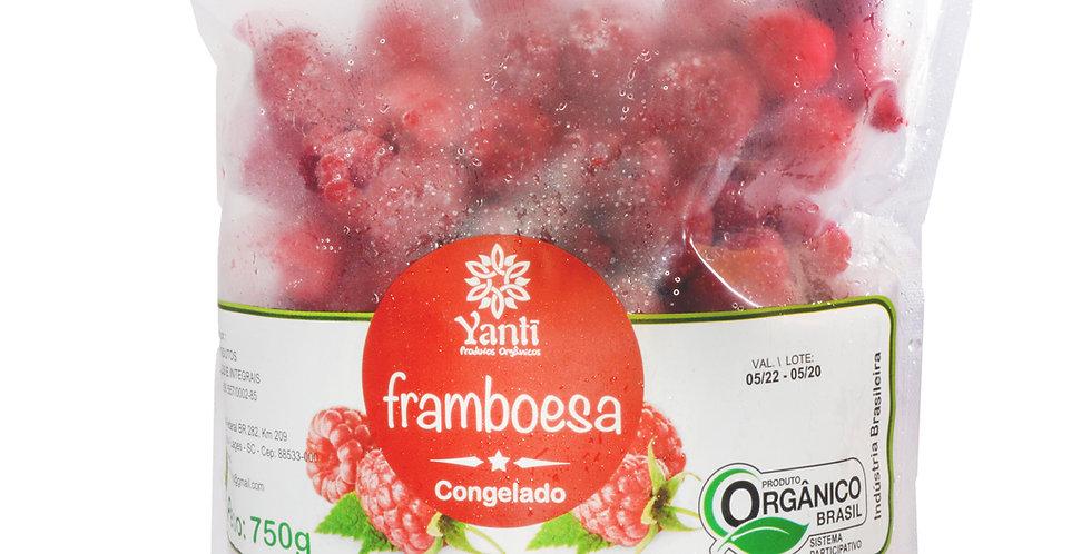 Framboesa  -  750g