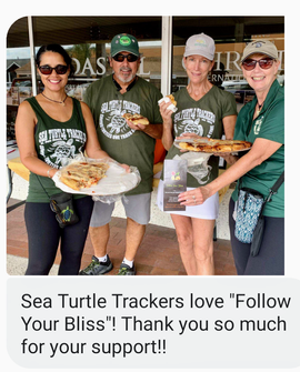 Turtle Trackers!!