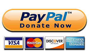 paypal png donat cards.png