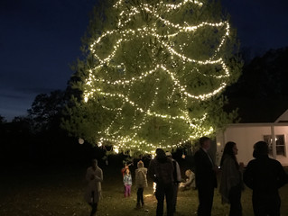 2016 - Tree Lighting Ceremony