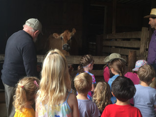 Fall Field Trip - Mennonite Farm In Loveville