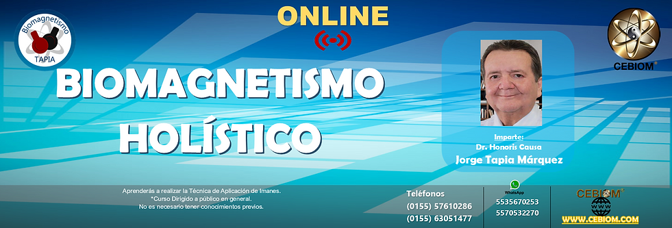 HOLISTICO ONLINE.png