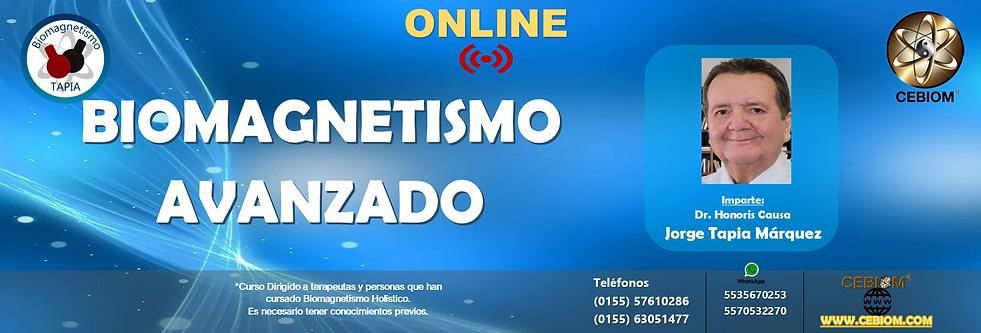AVANZADO ONLINE.png
